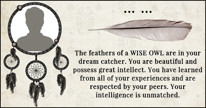 Which Feathers Are In Your Dream Catcher Adorable Dream Catcher Works